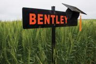 Bentley graduates